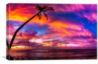 Sunset in Hithadhu, Canvas Print