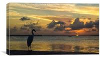 Sunset in Florida, Canvas Print