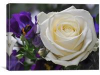 Purple & Cream Flowers, Canvas Print