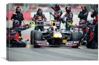 Sebastian Vettel - Redbull RB6, Canvas Print