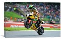 Michael Laverty - Swan Yamaha - 2011, Canvas Print