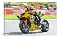 Tommy Hill at Cadwell Park 2011, Canvas Print