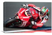 John Laverty - BSB 2010 at Oulton Park, Canvas Print