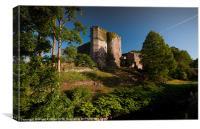 Brecon Castle in May, Canvas Print