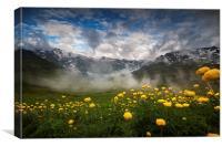 Alpine summer landscape, Canvas Print