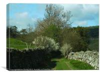 A Stroll in Swaledale, Canvas Print