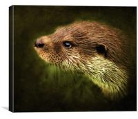 Otter, Lutra lutra., Canvas Print