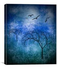 Bare Trees, Canvas Print