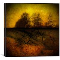 Roots, Canvas Print