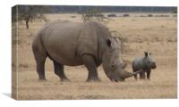 White Rhino with Young, Canvas Print