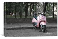 Pink Scooter, Canvas Print