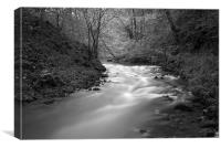 The River Wye, Millers Dale Derbyshire, Canvas Print