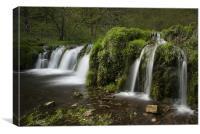 The River Lathkill, Lathkill Dale Derbyshire, Canvas Print