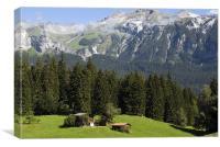 Swiss Meadow, Canvas Print