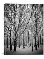 In the deep midwinter, Canvas Print
