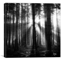 This new day, Canvas Print