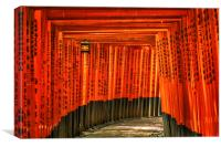 Fushimi Inari, Canvas Print