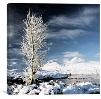 Glencoe winter, Canvas Print