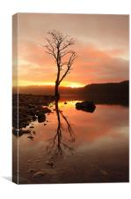 Loch Ard Sunrise, Canvas Print
