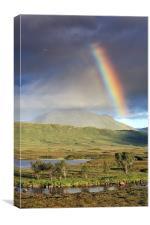 Glencoe Rainbow, Canvas Print