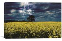 Lightening Tree - Seeds, Canvas Print
