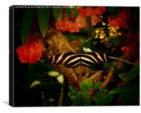 FAIRY TALE BUTTERFLY, Canvas Print