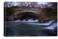 Eggesford weir pool, Canvas Print