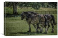 Working Horses, Canvas Print