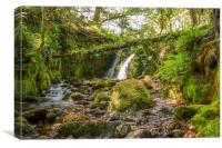 Venford Falls Dartmoor, Canvas Print
