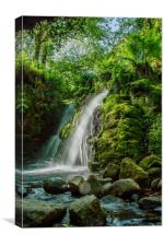 Vanford falls Dartmoor, Canvas Print