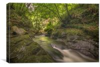 Lydford Gorge Dartmoor, Canvas Print