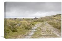 Foggintor Quarry Dartmoor, Canvas Print