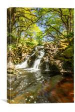 River Avon, Dartmoor, Canvas Print