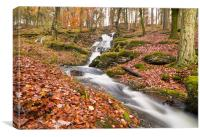 Elan Valley Autumn Waterfall, Canvas Print