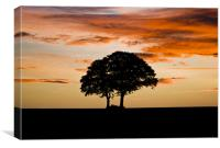 Sunrise Silhouette, Canvas Print