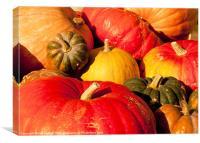 Pumpkins, Canvas Print