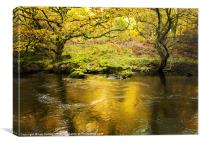 Elan Valley Autumn, Canvas Print