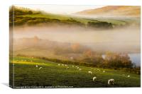 Elan Valley Mist, Canvas Print