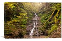 Radnor Forest Waterfall, Canvas Print