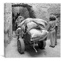 Marrakech Donkey and cart, Canvas Print