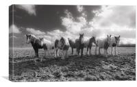 The Magnificent Seven, Canvas Print
