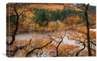 Elan Valley Autumn Colours, Canvas Print