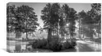 Misty Lake, Canvas Print