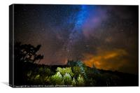Elan Valley Night Sky, Canvas Print