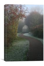 Frosted Path, Canvas Print