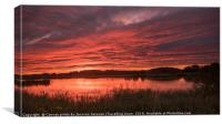 Drayton RSPB take 2 , Canvas Print