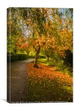 Autumnal colours , Canvas Print