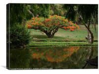 Mombasa Garden, Canvas Print