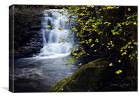 Waterfall Watersmeet River Lyn, Canvas Print