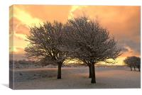 Snow Scene, Canvas Print